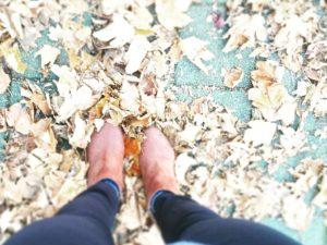 Fit für den Herbst mit Ayurveda und Co.
