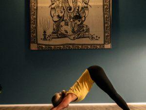 Yogasutra 1 x 1 : Ahimsa – die Lehre vom Verbundensein